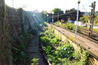 Edge Hill Station Garden Launch